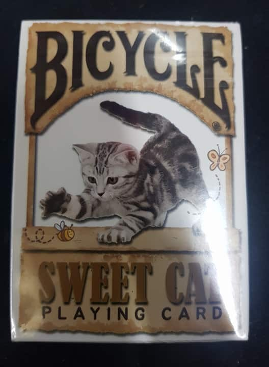 1593320649-h-250-Bicycle Sweet Cat.jpg